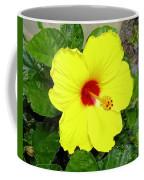 Chinese Hibiscus Coffee Mug
