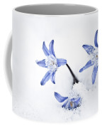 Chionodoxa - Glory Of The Snow Coffee Mug