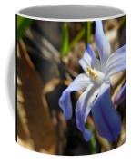 Chionodoxa I I Coffee Mug