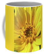 Chipmunk Planting - Sunflower Coffee Mug