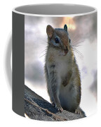 Chipmunk Up Close Coffee Mug