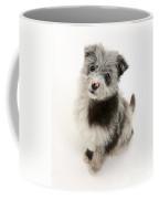 Chipoo Puppy Coffee Mug