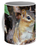 Chippy Coffee Mug