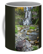 Chittenango Falls In Autumn  Coffee Mug