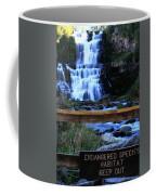 Chittenango Falls State Park Coffee Mug