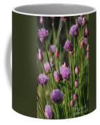 Chive Flowers Coffee Mug