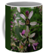 Chock Cherry Flower Coffee Mug