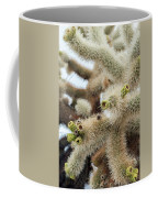 Cholla Cactus Garden Closeup Coffee Mug