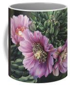 Cholla Flowers Coffee Mug