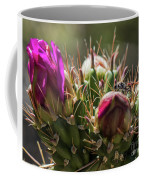 Cholla With Wasp Coffee Mug