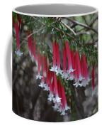 Christmas Bells 1 - Australian Native Fuchsia Coffee Mug