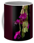 Christmas Cactus Purple Flower Blooms Coffee Mug