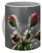 Christmas In May Coffee Mug by Lori Deiter
