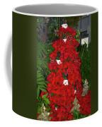 Christmas Poinsettia Display 002 Coffee Mug