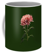 Chrysanthemum Shelbers Coffee Mug
