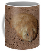 Chubby Prairie Dog Resting In A Shallow Hole Coffee Mug