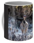 Chukar Coffee Mug
