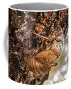 Cicada Exoskeleton Side Coffee Mug