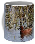 Cinnamon Teal Coffee Mug