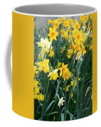 Circle Of Daffodils Coffee Mug