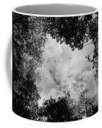 Circling Overhead Coffee Mug