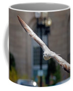 City Gull Coffee Mug