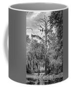 City Park Lagoon - Bw Coffee Mug