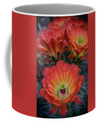 Claret Cup Cactus Flowers  Coffee Mug