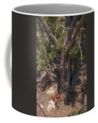 Claret Cup Cactus #2 Coffee Mug