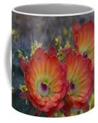 Claret Cup Cactus - Three Of A Kind  Coffee Mug