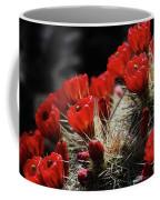 Claret Cups Coffee Mug