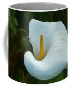 Classic Cala Coffee Mug