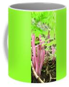 Clavaria Zollingeri  Coffee Mug