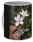 Claytonia Coffee Mug