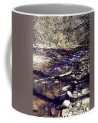 Cleansing Stream Coffee Mug