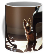 Clear Coast Coffee Mug