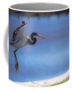 Cleared For Landing Coffee Mug