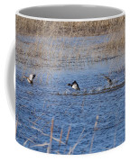 Cleared For Takeoff-ring-necked Ducks  Coffee Mug