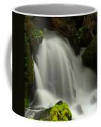 Clearwater Falls 1 Coffee Mug
