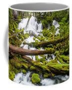 Clearwater Falls And Rapids Coffee Mug