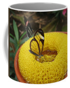 Clearwing Butterfly Coffee Mug