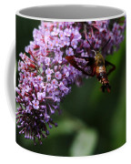 Clearwing Hummingbird Moth Coffee Mug