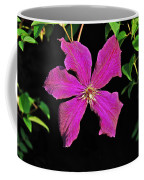 Clematis 2598 Coffee Mug