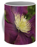 Clematis 4000 Coffee Mug