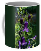 Clematis Flower Blossoms Coffee Mug