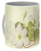 Clematis Jackmanni Alba Coffee Mug