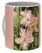 Clematis Montana Marjorie 1060  Coffee Mug