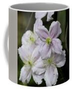 Clematis Montana Rubens Group Coffee Mug