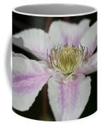 Clematis Study 2 Coffee Mug