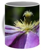 Clementas Coffee Mug